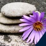 Curso de iniciación Mindfulness
